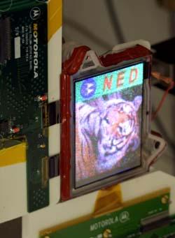 Blízká budoucnost po LCD